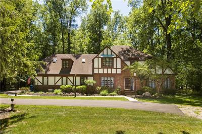 North Ridgeville Single Family Home For Sale: 5380 Barton Rd