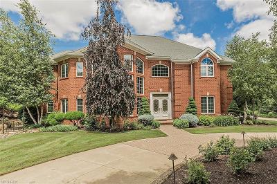 Solon Single Family Home For Sale: 6140 Penfield Ln