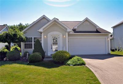 Olmsted Falls Single Family Home For Sale: 9193 Willowbrook Ct