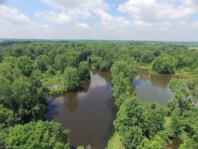 Huron County Residential Lots & Land For Sale: 425 State Route 60 South