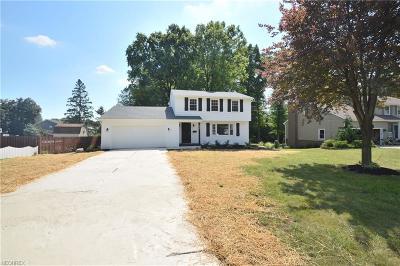 Poland Single Family Home For Sale: 6737 Katahdin Dr