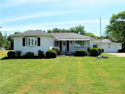 Twinsburg Single Family Home For Sale: 9045 Chamberlin Rd