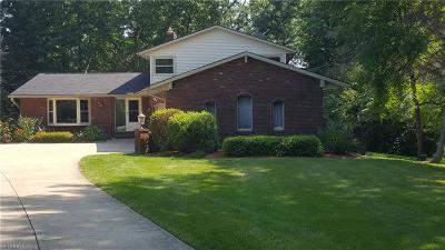 Summit County Single Family Home For Sale: 4820 Everett Rd