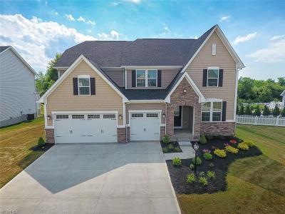 Medina Single Family Home For Sale: 6550 Stoneyridge Dr