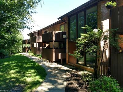 Brecksville, Broadview Heights Condo/Townhouse For Sale: 6875 Carriage Hill Dr #E61