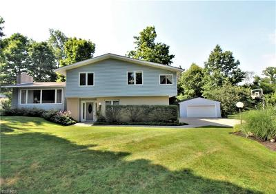 Summit County Single Family Home For Sale: 1360 Barlow Rd