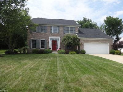 Summit County Single Family Home For Sale: 9789 Parkland Dr