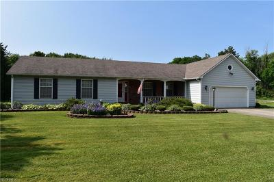 Geauga County Single Family Home For Sale: 11115 Clark Rd