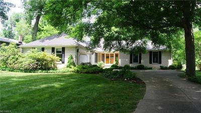 Brecksville Single Family Home For Sale: 10523 Laurel Ln