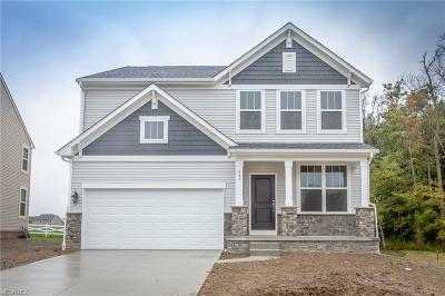 Aurora Single Family Home For Sale: 982 Hawkin Ln