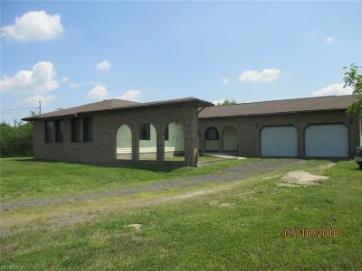 Leavittsburg Single Family Home For Sale: 1715 Layer Rd
