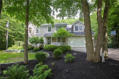 Geauga County Single Family Home For Sale: 9112 Lake In The Woods Trl