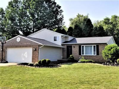North Royalton Single Family Home For Sale: 3122 Helen Dr