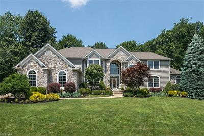 Brecksville Single Family Home For Sale: 4567 Hunting Valley Ln
