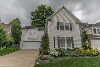 Cleveland OH Single Family Home For Sale: $284,900