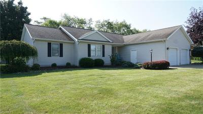 Muskingum County Single Family Home For Sale: 460 Spring Valley Dr