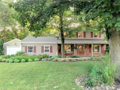 Copley Single Family Home For Sale: 890 South Hametown Rd