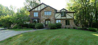 Copley Single Family Home For Sale: 2313 South Hametown Rd
