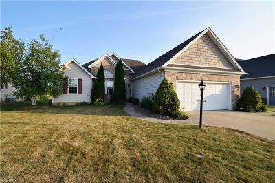 Lorain County Single Family Home For Sale: 218 Granger Dr