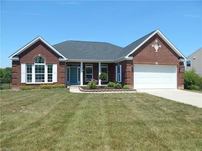 North Ridgeville Single Family Home For Sale: 8755 Hazelwood Run