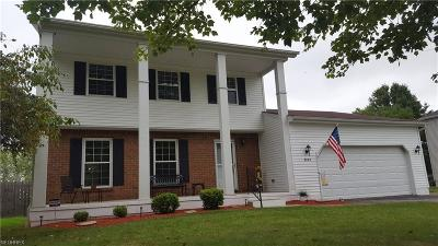 Canfield Single Family Home For Sale: 6625 Summit Dr
