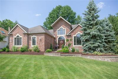 Brecksville, Broadview Heights Single Family Home For Sale: 6737 Mallard Dr