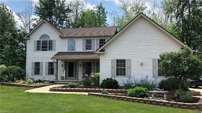 Mentor Single Family Home For Sale: 6545 Chase Dr