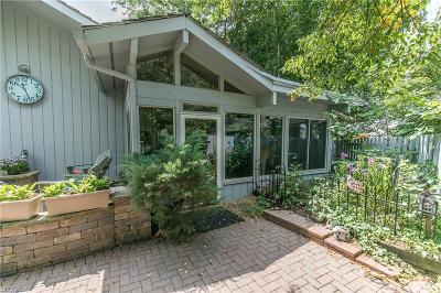 Aurora Condo/Townhouse For Sale: 491 Concord Downs Path