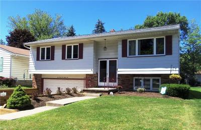 Maple Heights Single Family Home For Sale: 14285 Rochelle Dr
