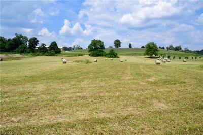 Muskingum County Residential Lots & Land For Sale: Chandlersville Rd