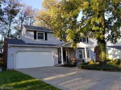 Strongsville OH Single Family Home For Sale: $255,000