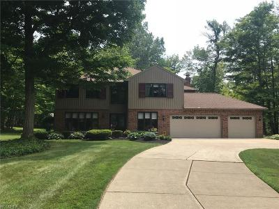 Chardon Single Family Home For Sale: 10891 Nollwood Dr