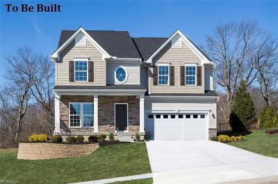 Aurora Single Family Home For Sale: 370 Lakeland Way