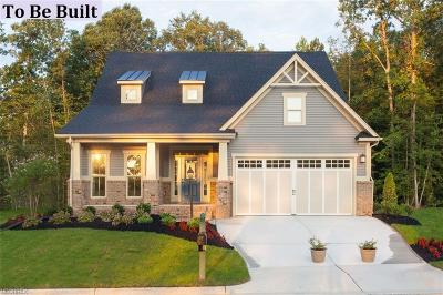 Aurora Single Family Home For Sale: 380 Lakeland Way