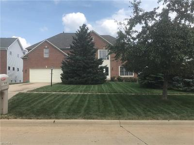 Strongsville Single Family Home For Sale: 16268 Falmouth Dr