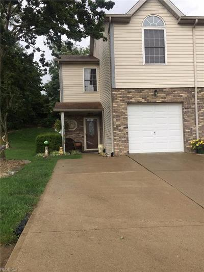 Muskingum County Condo/Townhouse For Sale: 1164 South Slope Bay