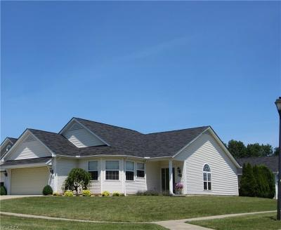 North Royalton Single Family Home For Sale: 10214 Hidden Valley Dr