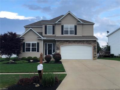 Painesville Township Single Family Home For Sale: 971 Pebble Beach Cv
