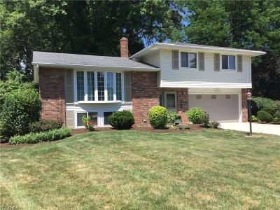 North Olmsted Single Family Home For Sale: 29542 Dorchester