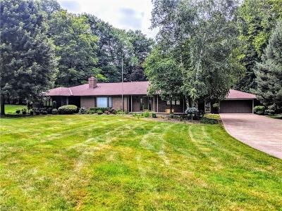 Painesville Single Family Home For Sale: 38 Wintergreen Hill Dr