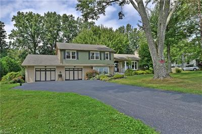 Vienna Single Family Home For Sale: 360 Sodom Hutchings Rd Southeast