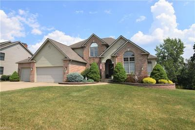 Summit County Single Family Home For Sale: 3141 Preakness Dr