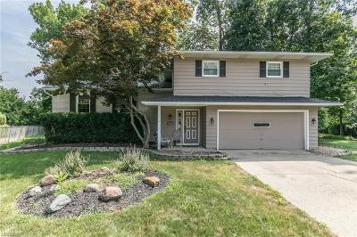 Cuyahoga County Single Family Home For Sale: 16770 Pheasant Trl