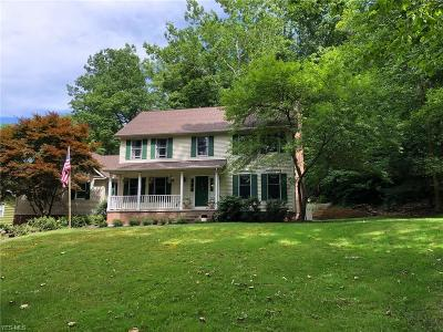 Chagrin Falls Single Family Home For Sale: 375 Solon Rd