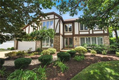 High Point Single Family Home For Sale: 17879 Saratoga Trl