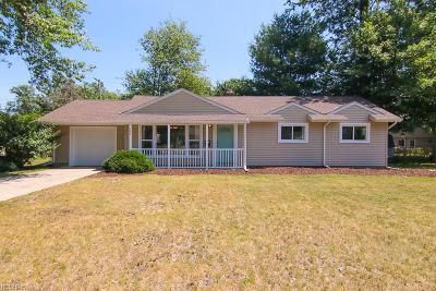 Avon Lake Single Family Home For Sale: 193 Moorewood Ave