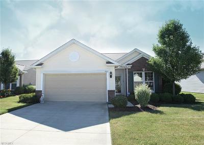 North Ridgeville Single Family Home For Sale: 9161 Vernon Hl