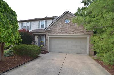 Twinsburg Single Family Home For Sale: 2227 White Marsh Dr