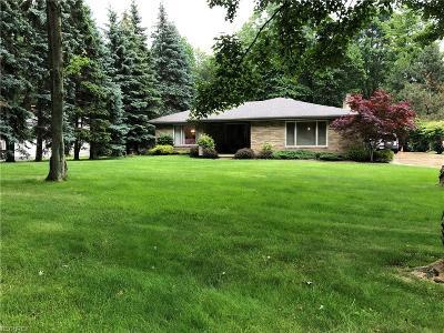 Brecksville Single Family Home For Sale: 9667 Barr Rd