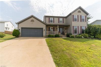 Wadsworth Single Family Home For Sale: 568 Woodcrest Dr